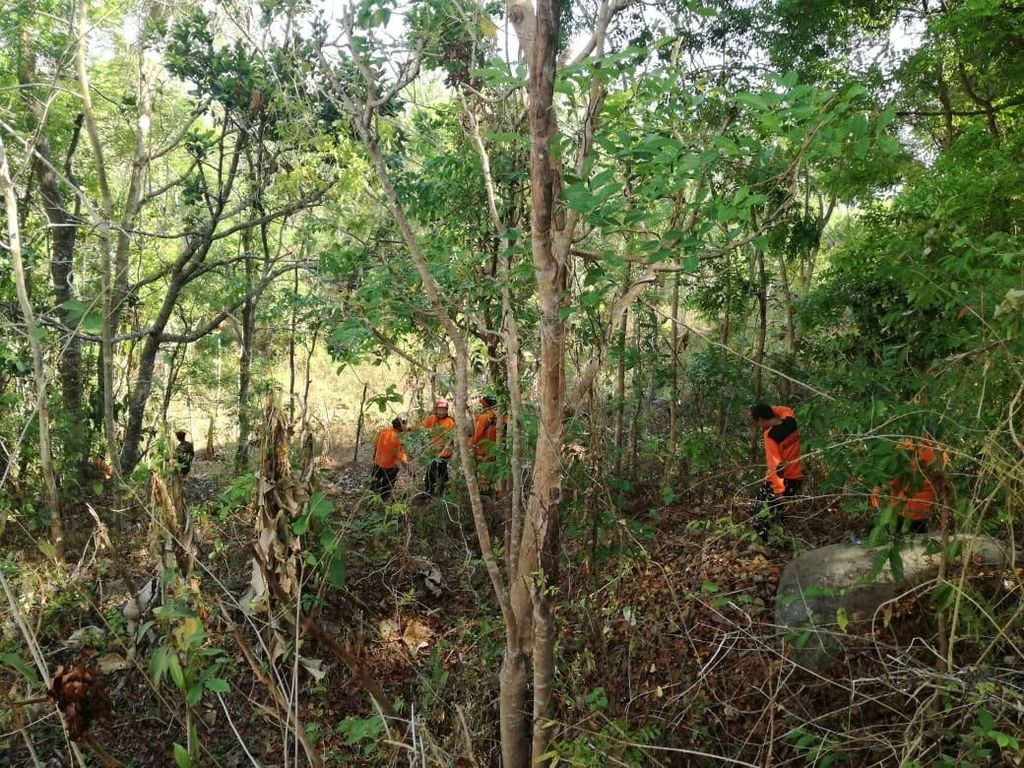 Nenek Hilang 2 Hari Diduga Tersesat, Tim SAR Sisir Hutan di Gunungkidul