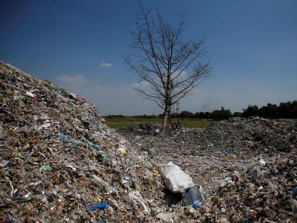 Partikel Sisa Sampah Plastik Mulai Ditemukan dalam Telur Ayam di Indonesia