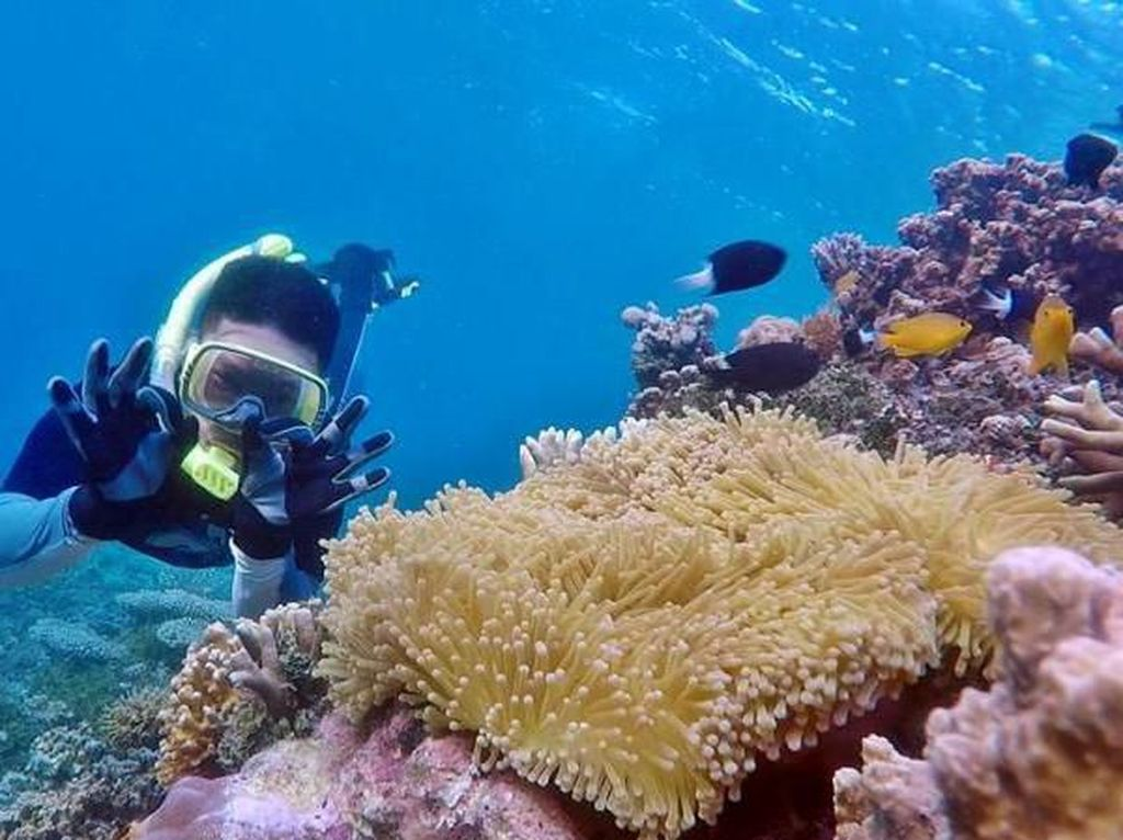 5 Tempat Wisata Makassar dan Sekitarnya yang Hits Banget