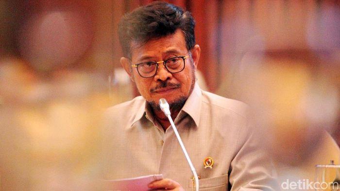 Menteri Pertanian Syahrul Yasin Limpo Foto: Lamhot Aritonang