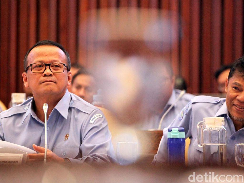 Edhy Prabowo Menjawab Kontroversi Benih Lobster hingga Cantrang