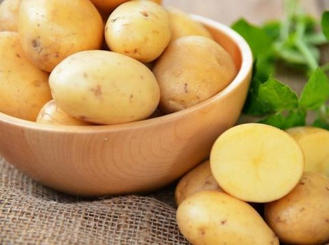 Anak Tak Mau Nasi? Berikan 7 Makanan Pengganti Karbohidrat