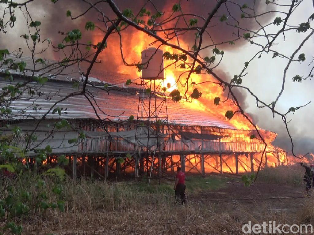 Kompleks Kandang Ayam Terbakar, 2 Damkar dan Water Cannon Diterjunkan