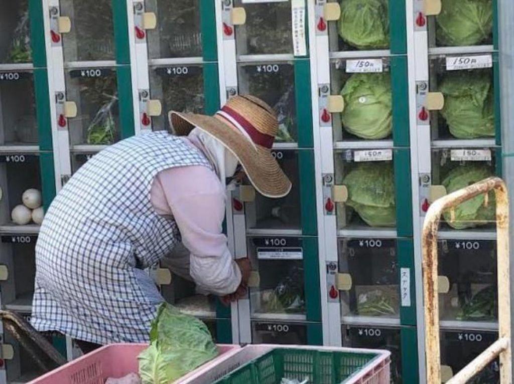 Canggih! Petani Sayuran dan Buah Ini, Jual Hasil Panen Pakai Mesin Otomatis