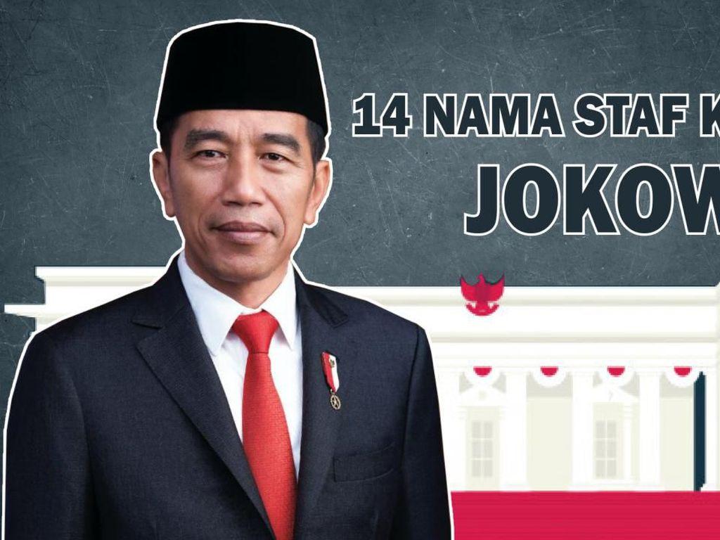 Ini 14 Nama Staf Khusus Pilihan Jokowi