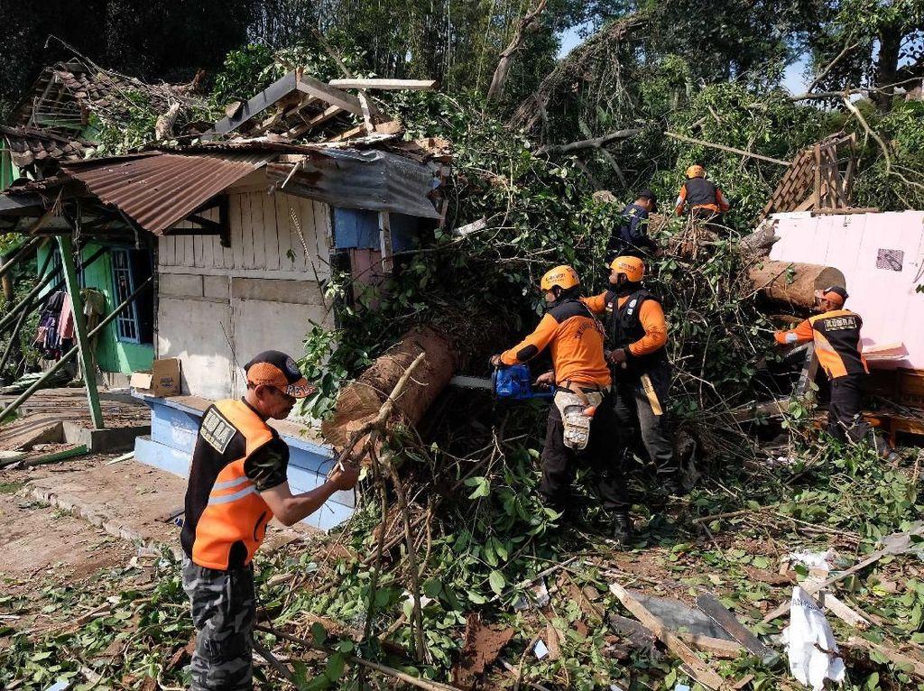 2 Orang Tewas Imbas Pohon Tumbang di Temanggung