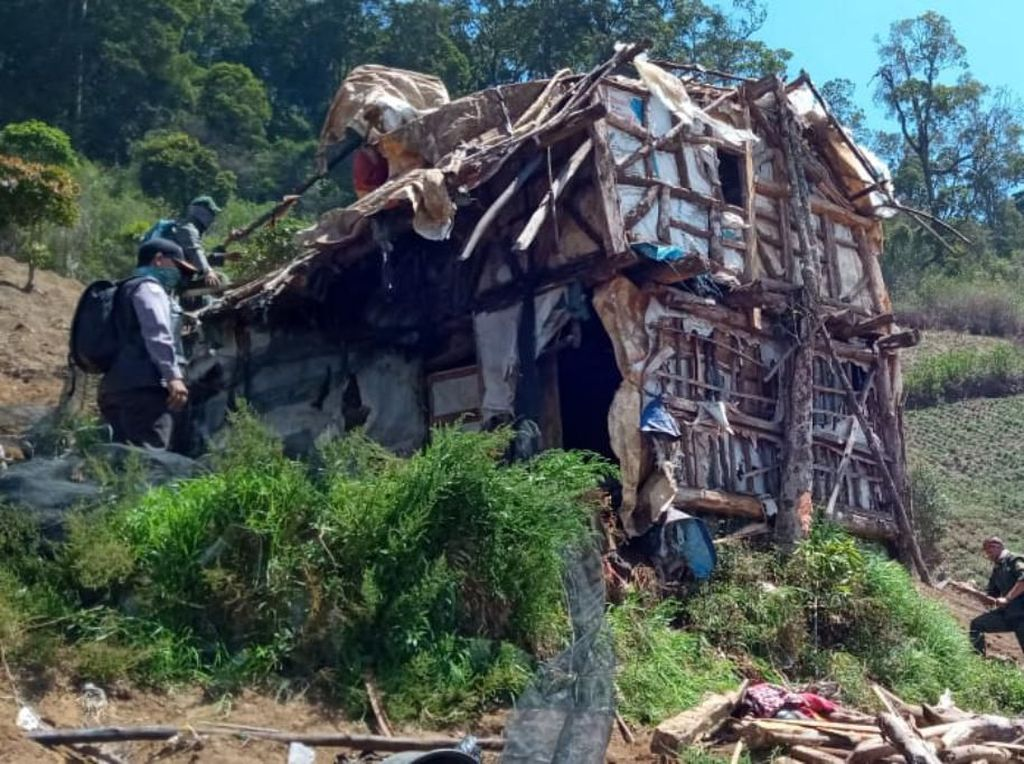 168 Gubuk Petani di Lokasi Alih Fungsi Hutan Bandung Ditertibkan