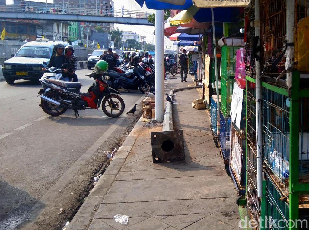 Pernah Ditertibkan, Pedagang Hewan di Jatinegara Tak Kapok Jajah Trotoar