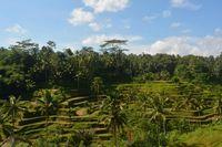 Tantangan Wishnutama untuk Kembangkan Pariwisata Bali Utara