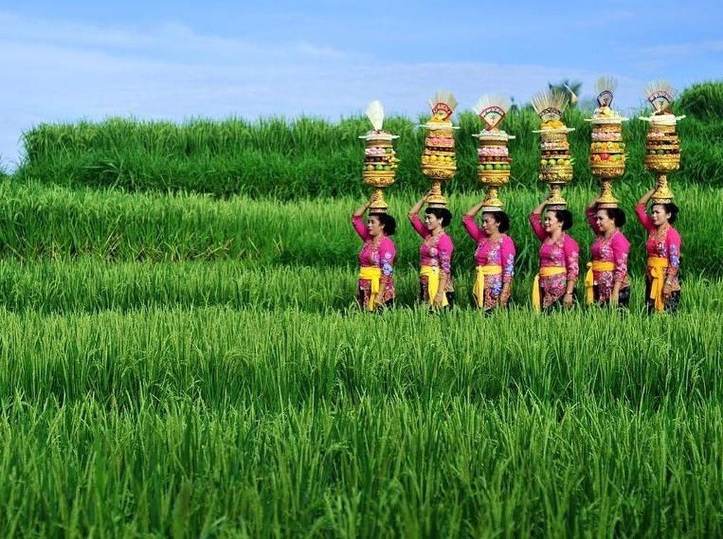 Ini Kata Turis Indonesia Kalau Memberi Review Online