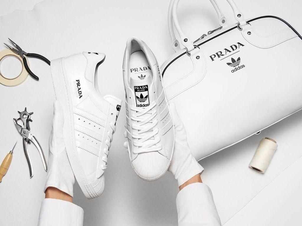 Cuma Ada 700 Pasang di Dunia, Ini Sneakers Adidas x Prada