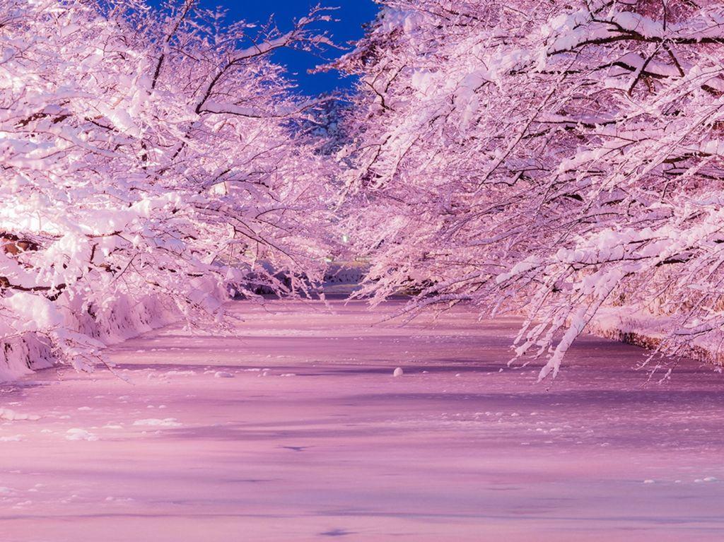 12 Tempat Wisata untuk Rasakan Sensasi Musim Dingin Terbaik di Jepang