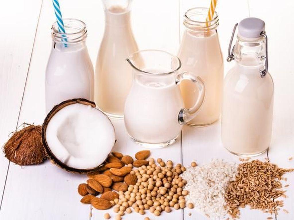Tak Kalah dari Susu Sapi, 5 Susu Nabati ini Juga Enak dan Menyehatkan