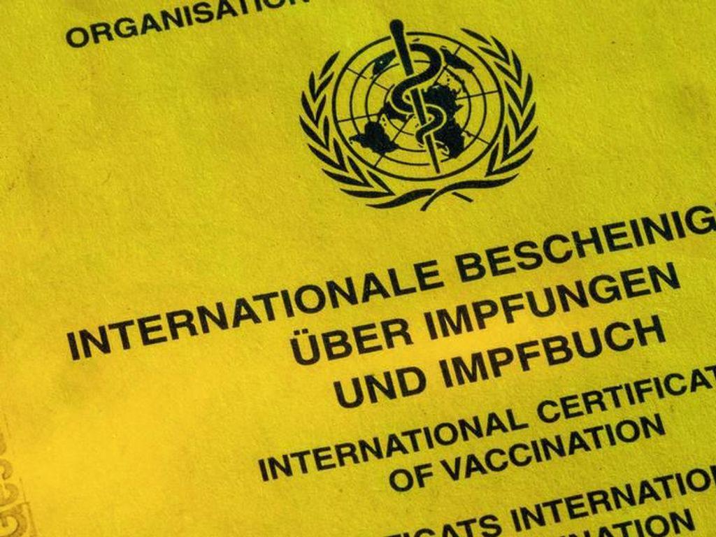 WHO: Kasus Campak Meningkat Tajam di Seluruh Dunia