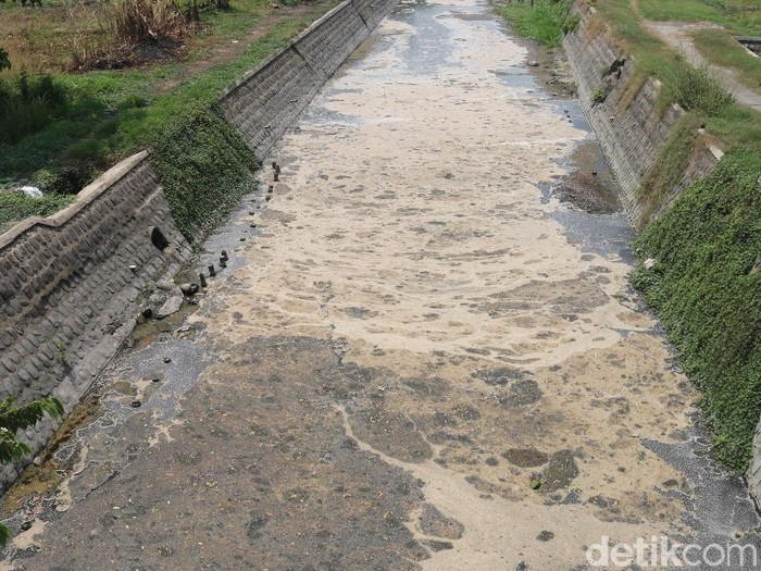 Sungai tercemar di Jombang (Enggran Eko Budianto/detikcom)