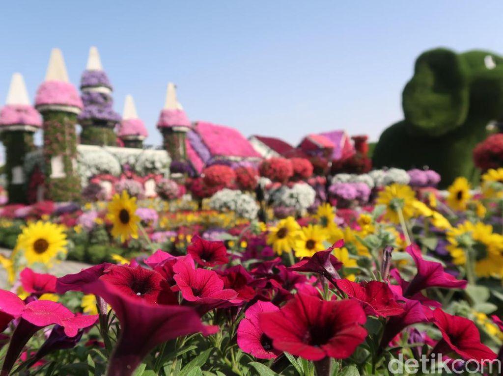 Foto: Taman Bunga Terbesar Dunia di Dubai