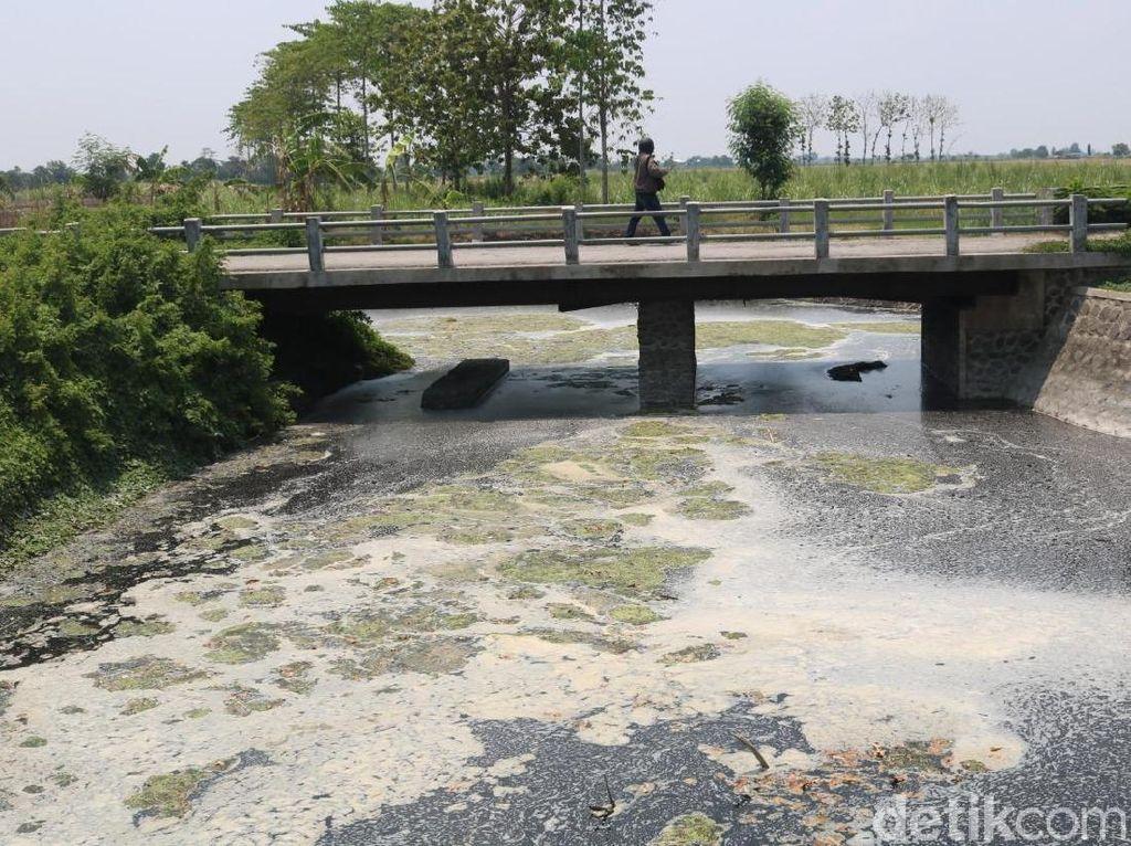 Kasus Pencemaran Sungai Avur Budug di Jombang Diselidiki Kementerian LH