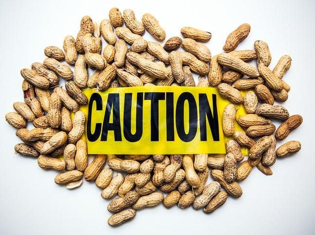 Restoran Didenda Rp 69 Juta Karena Sajikan Kari Kacang pada Konsumen Alergi Kacang