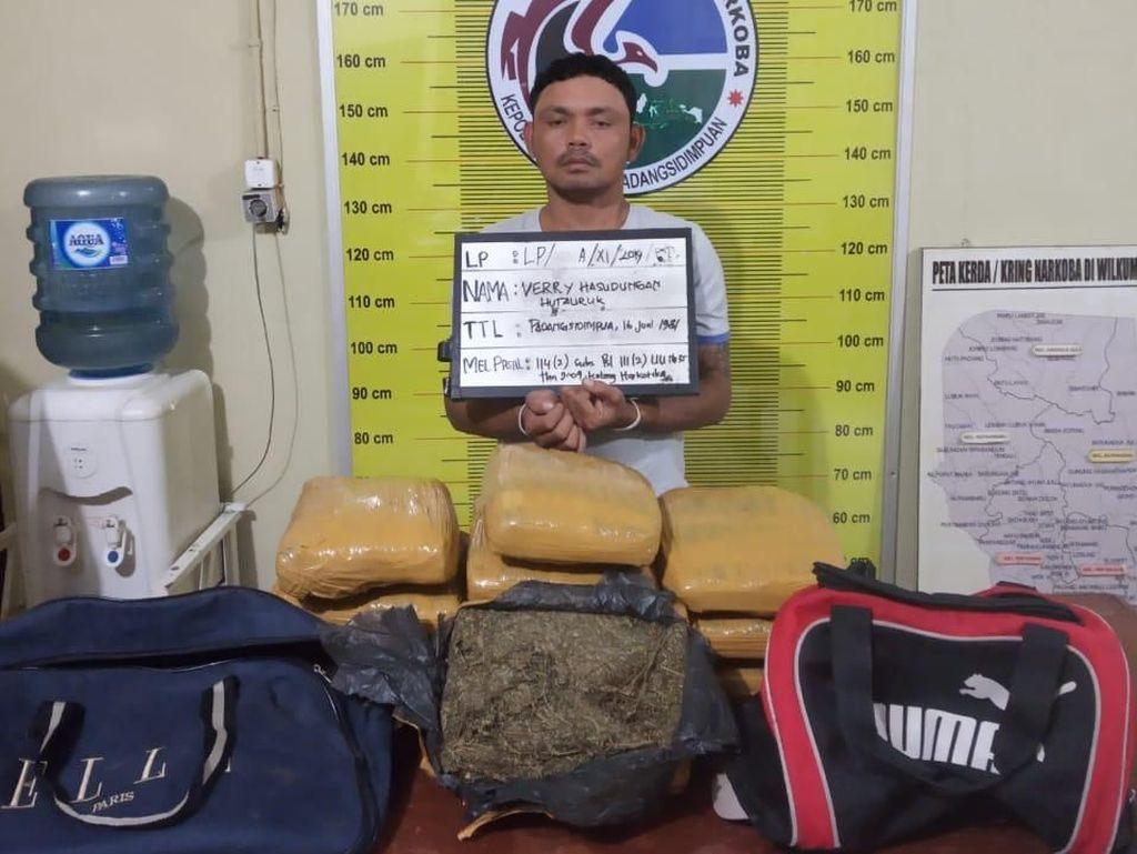 Polisi Ringkus Kurir 11,5 Kg Ganja di Padangsidimpuan