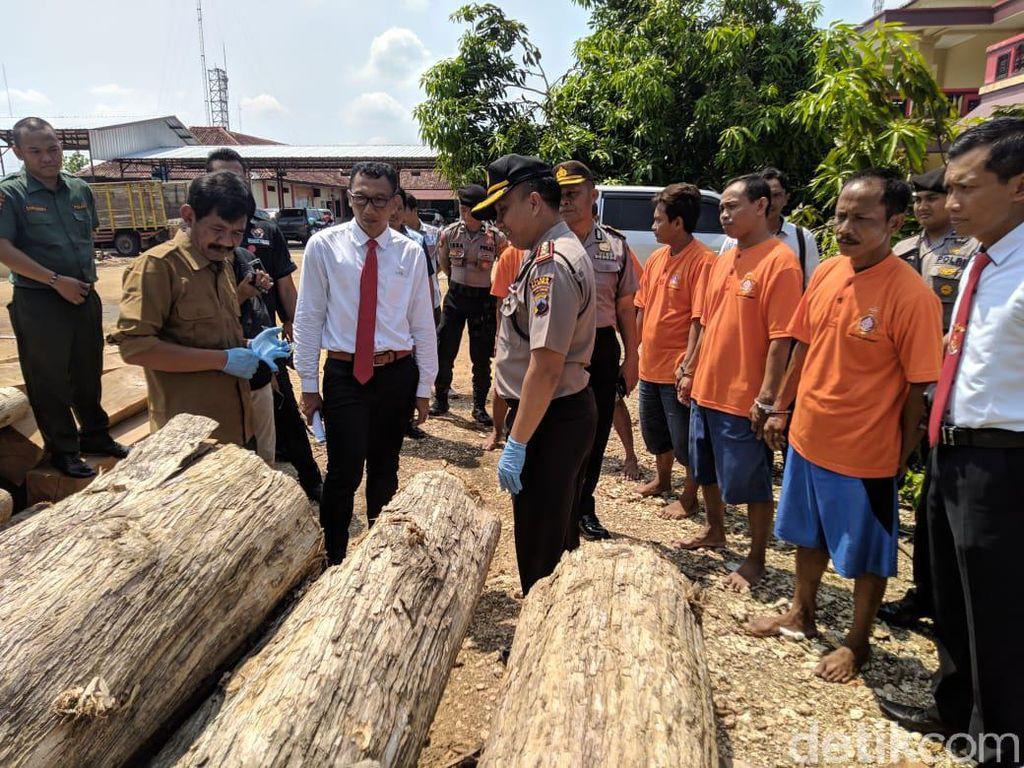 Polisi Ringkus Eks Pegawai Perhutani Terkait Illegal Logging di Blora