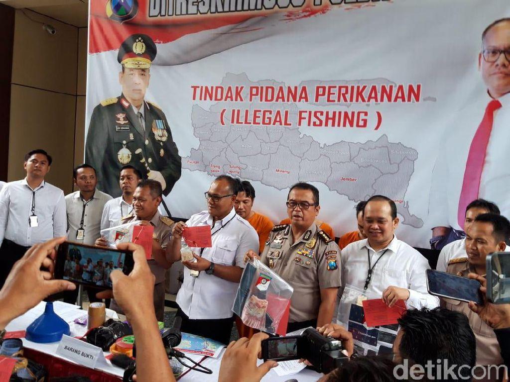 Polisi Gagalkan Penyelundupan Benih Lobster ke Vietnam Senilai Rp 1,5 M