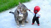 Aksi Kocak Spider-Man yang Bikin Ngakak