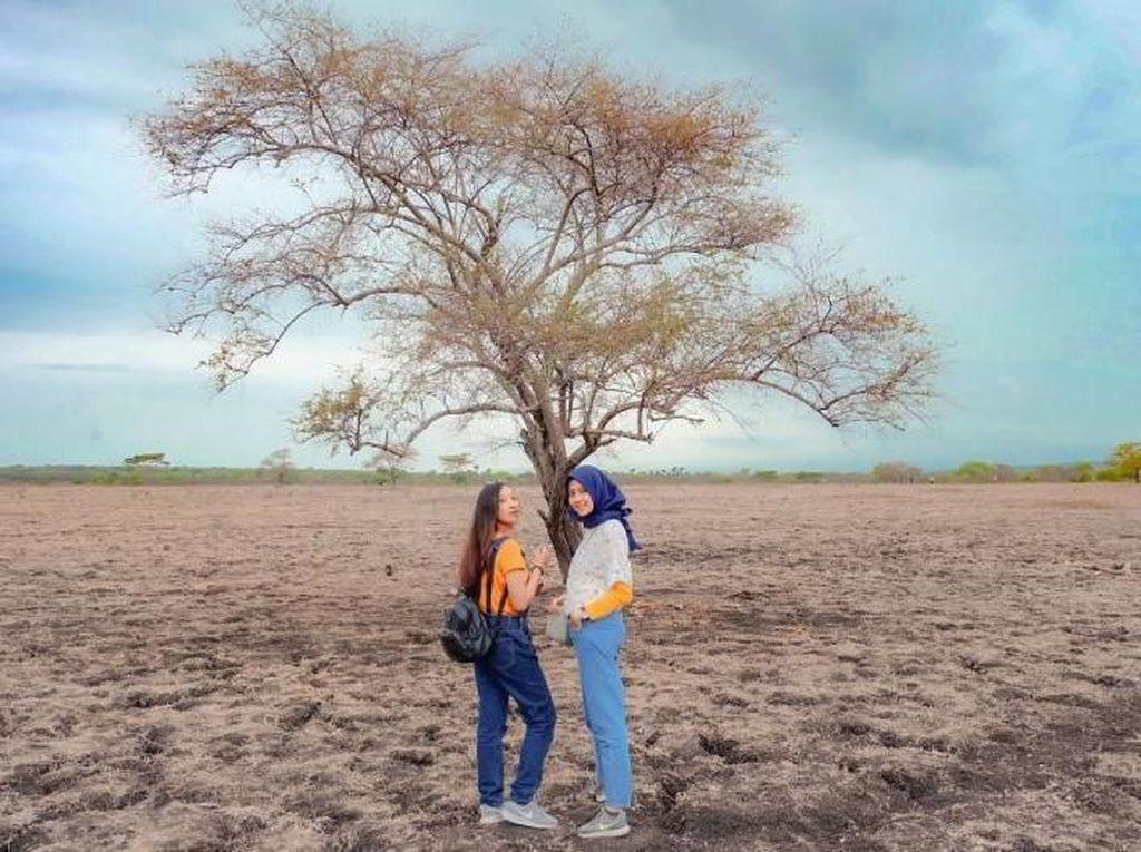 Menjelajah Little Africa di Ujung Pulau Jawa