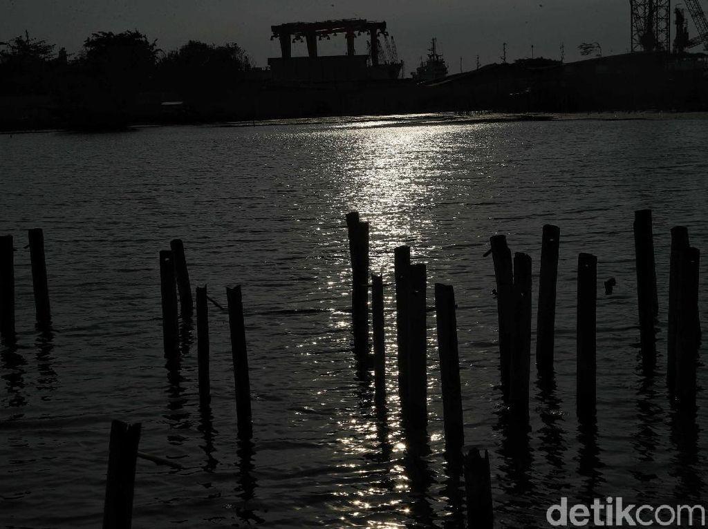 Potret Pesisir Jakarta Utara yang Terancam Tenggelam