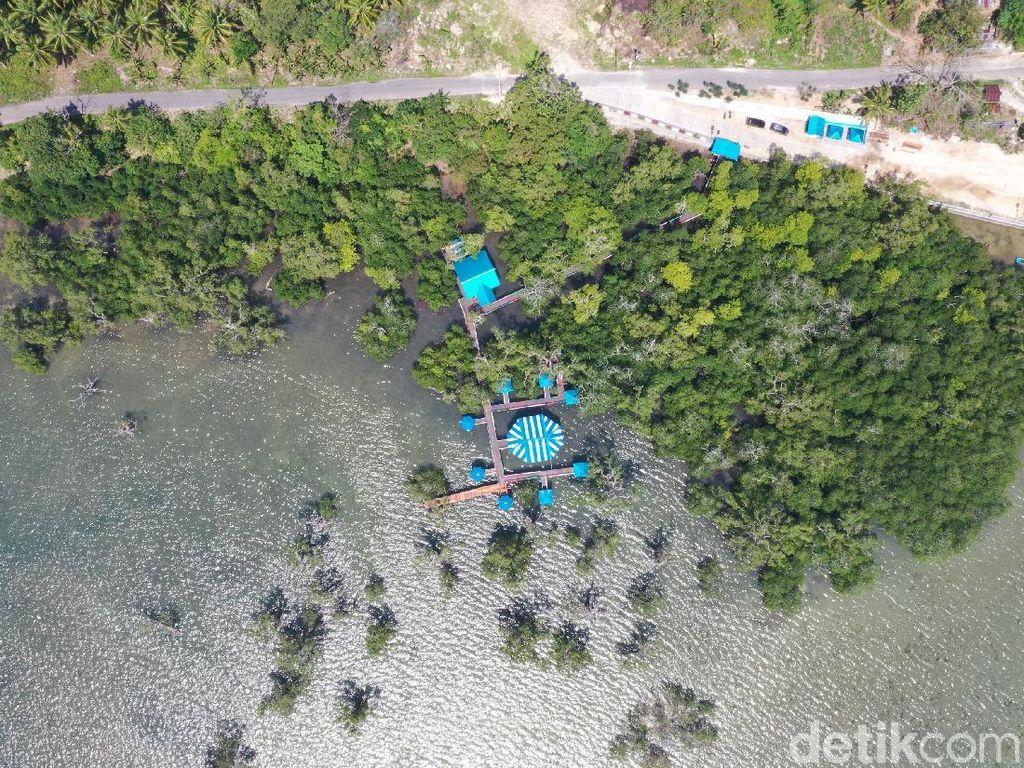 Foto Drone Hutan Bakau yang Cantik dari Maluku Tenggara
