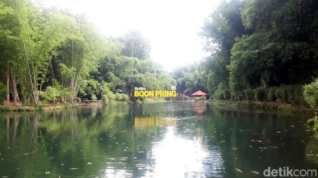 Foto: Hutan Bambu Instagramable dari Malang