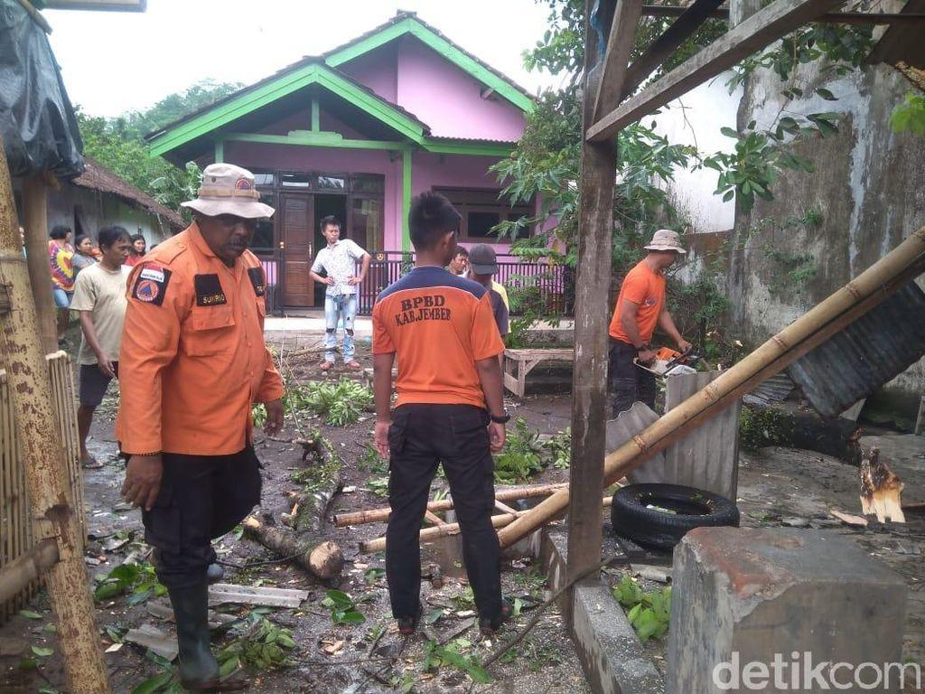 Angin Kencang Terjang 5 Kecamatan di Jember, Ratusan Bangunan Rusak