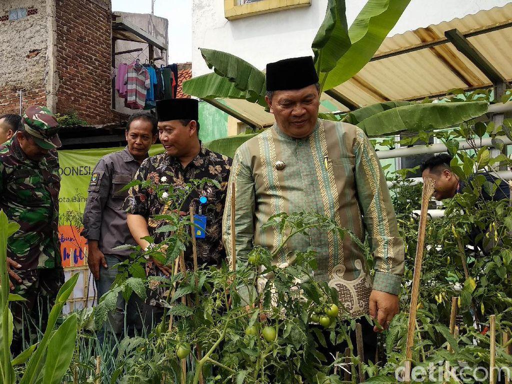 Kendalikan Inflasi, Pemkot Bandung Luncurkan Program Kampung Berkebun