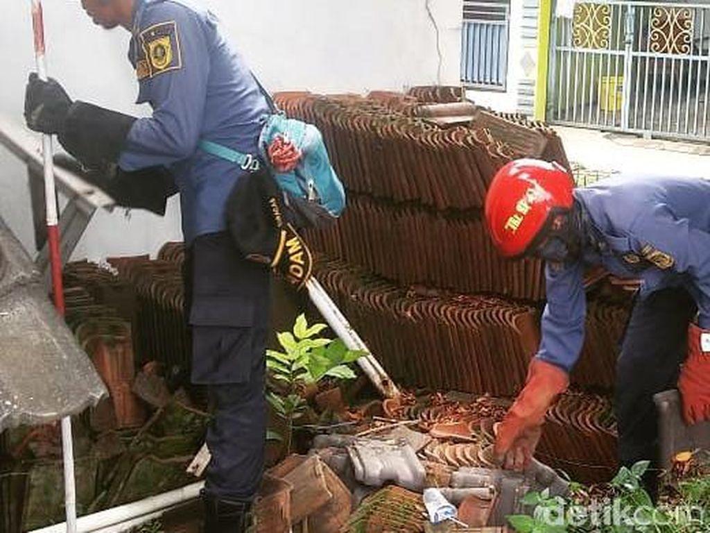 Warga Sebut Sudah 20 Anak Ular Kobra Ditangkap di Perumahan Citayam Bogor