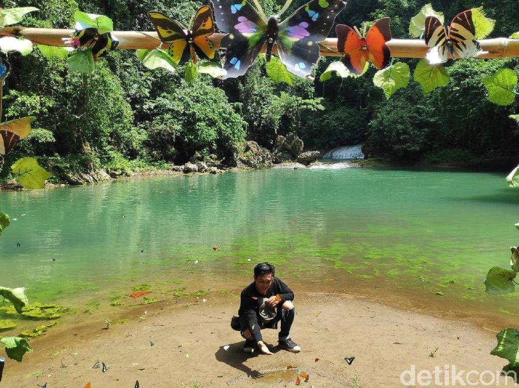 Foto: Ribuan Kupu-kupu di Taman Bantimurung