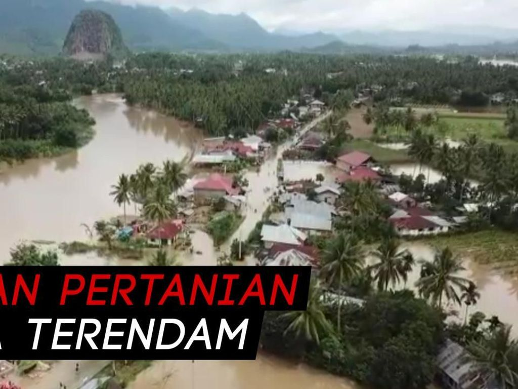 Hamparan Banjir di Sumatera Barat Rendam Ratusan Rumah