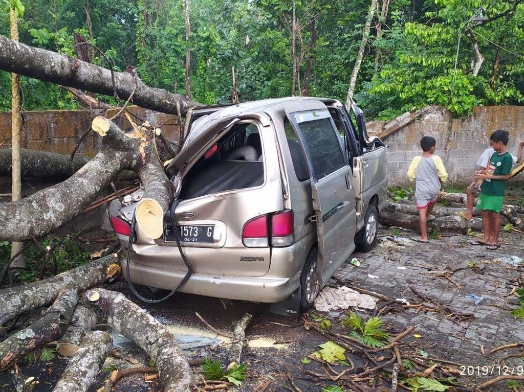 Angin Kencang di Sleman, Pohon Tumbang Timpa Rumah dan Mobil