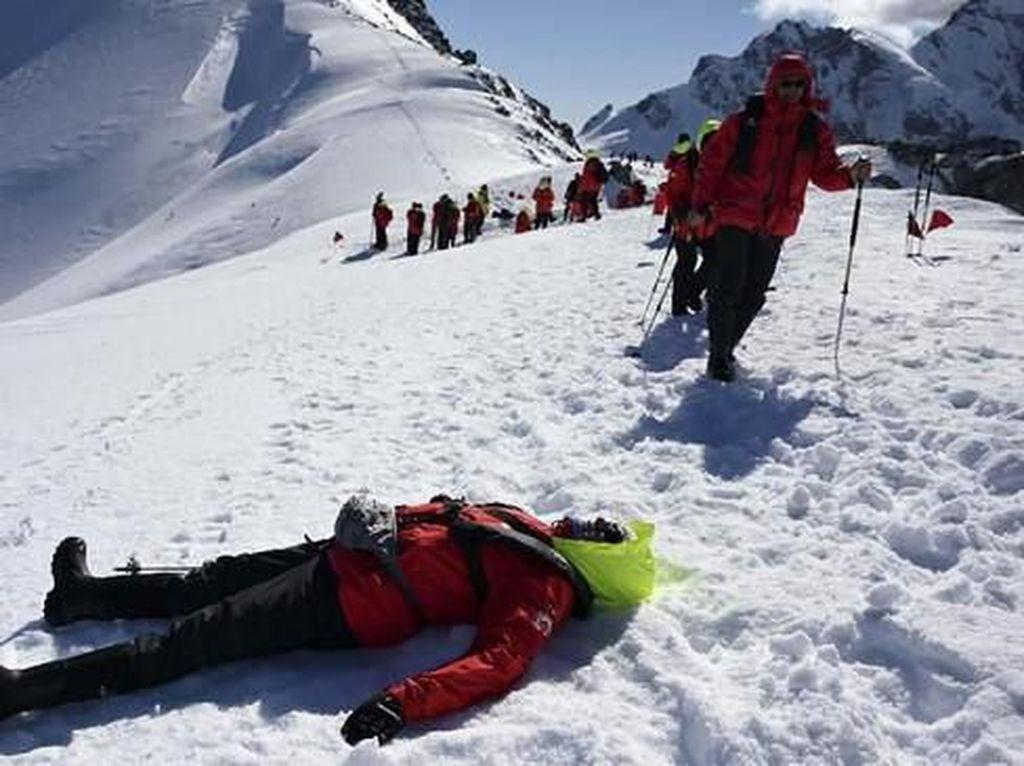 Es Antartika Meleleh, Turis Malah Kian Ramai