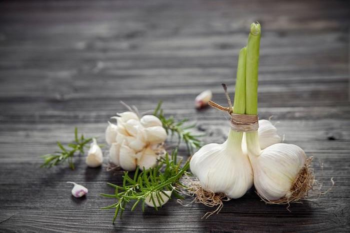 How to grow garlic. Photo: iStock