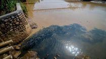 Duh, Lagi-lagi Aliran Sungai Citarum Tercemar Limbah