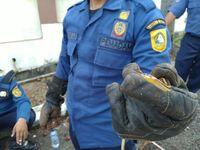 Ular jali ditemukan di halaman rumah warga.