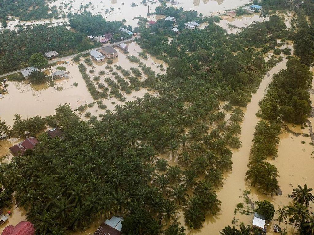 Derita Warga Riau: Kemarau Hirup Asap Kebakaran Hutan, Musim Hujan Kebanjiran