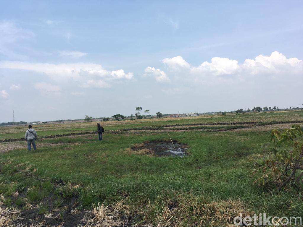 Unik! Ada Fenomena Tanah Bergoyang di Jombang
