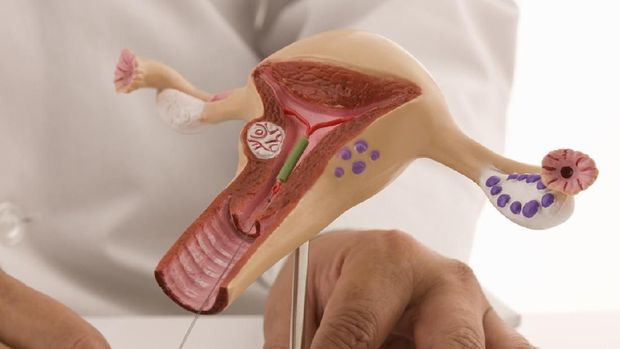 Doctor inserting an intrauterine device as an example for contraceptive method.