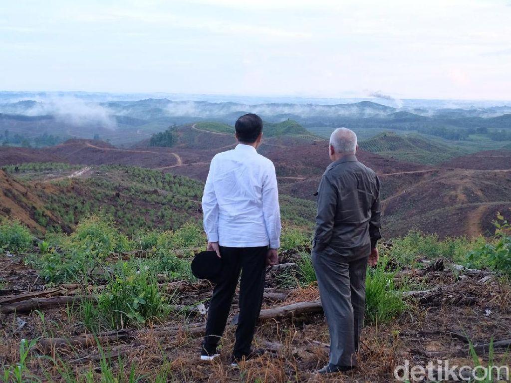 Alasan Arahan Jokowi di Balik Laju Pembahasan RUU Ibu Kota Negara