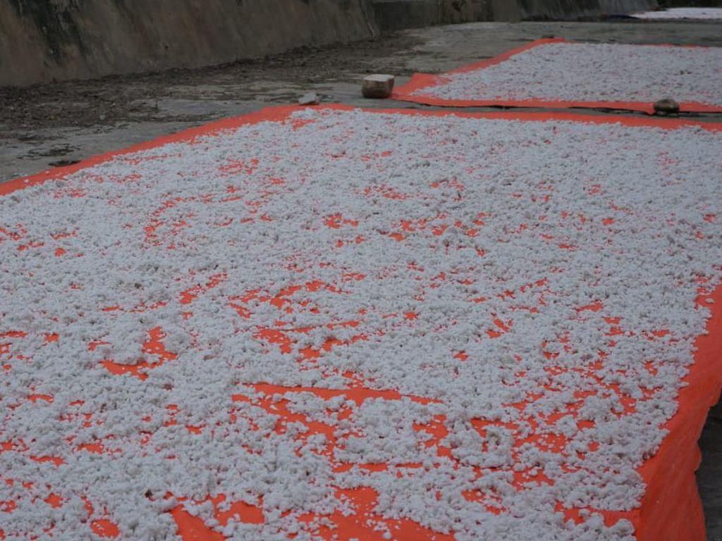 Di Perbatasan RI-Malaysia Ada Garam di Atas Gunung Lho!