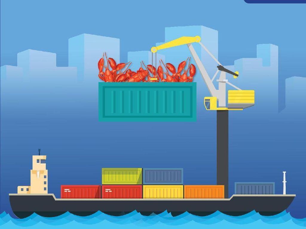 Nasib Nelayan di Balik Alasan Keran Ekspor Benur Lobster Dibuka