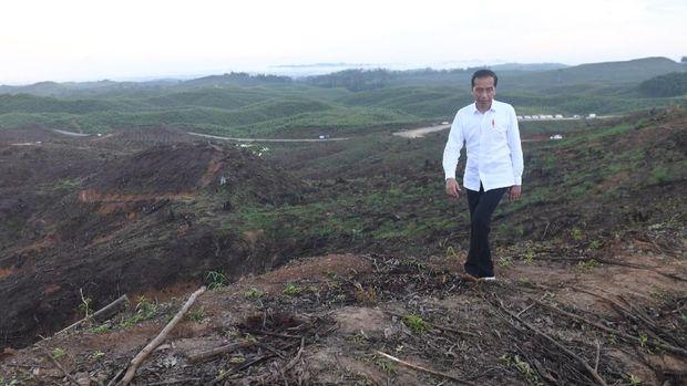 Presiden Joko Widodo meninjau lokasi rencana ibu kota baru di Sepaku, Penajam Paser Utara, Kalimantan Timur, Selasa (17/12/2019). ANTARA FOTO/Akbar Nugroho Gumay/aww.