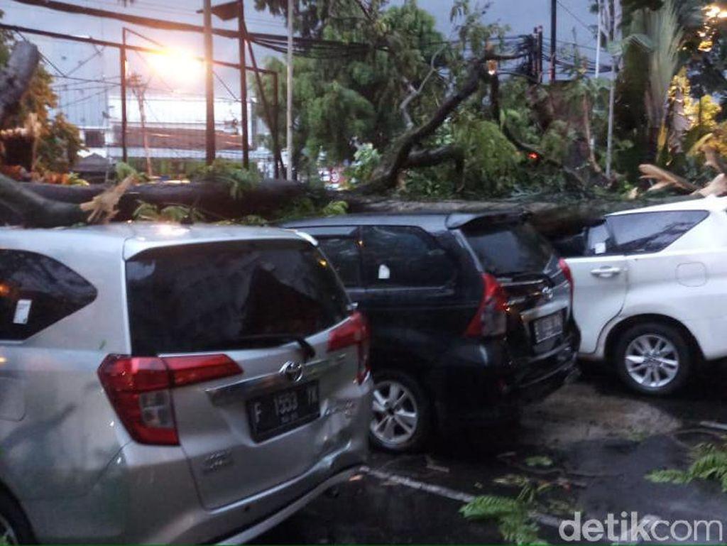Ngeri! Pemilik Mobil Tertimpa Pohon di Bandung Nyaris Jadi Korban
