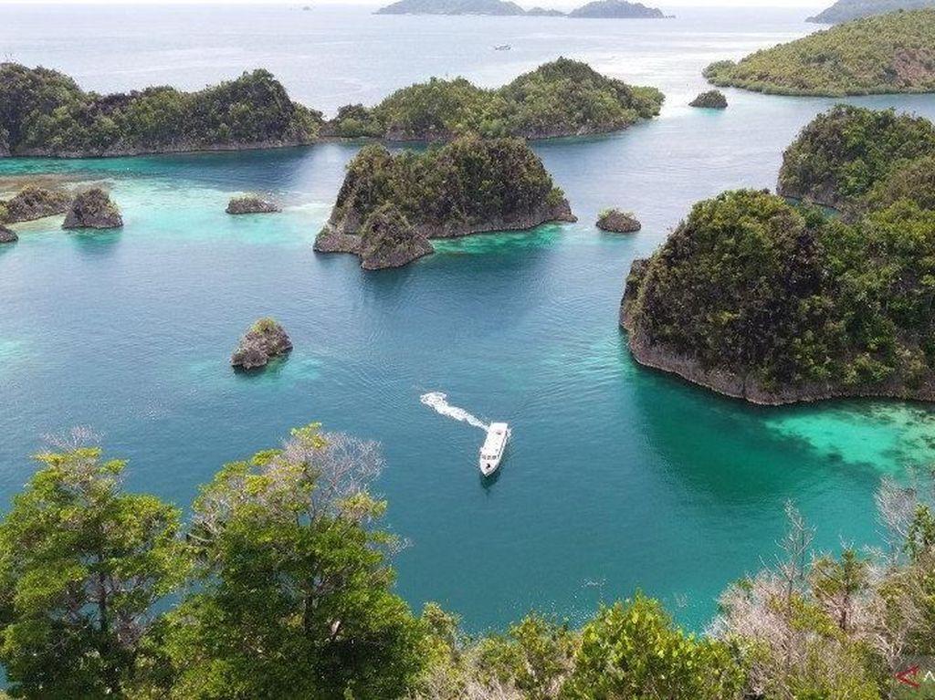 Perusahaan Eropa Mau Bikin Pabrik Rp 28 T di Papua Barat