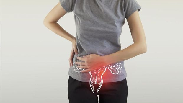 Ovulation, Cervical Cancer, Infographic, Vagina